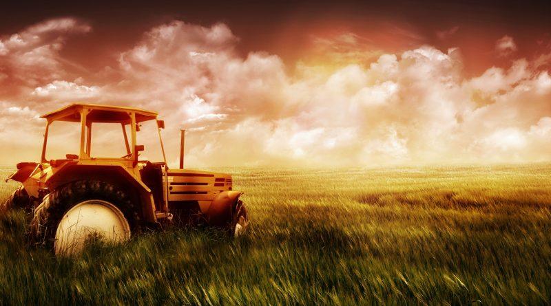 LE NUOVE IMPRESE AGRICOLE: una valida alternativa di investimento